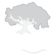 mallqui_white